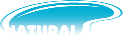 Natural State Pool and Spa